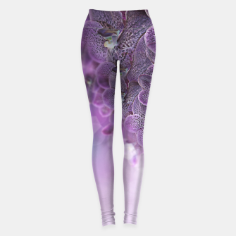 Thumbnail image of Violet Orchids Leggings, Live Heroes