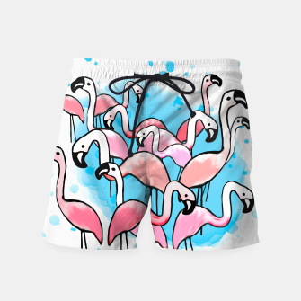 Thumbnail image of Flamingo City Swim Shorts, Live Heroes