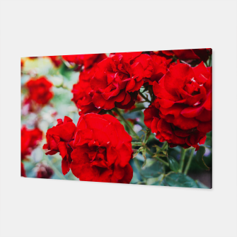 Thumbnail image of Red Roses Flowers Canvas, Live Heroes
