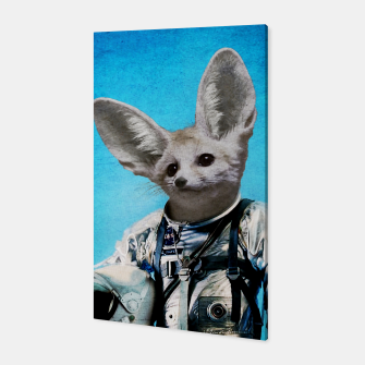 Thumbnail image of Captain Fennec Canvas, Live Heroes