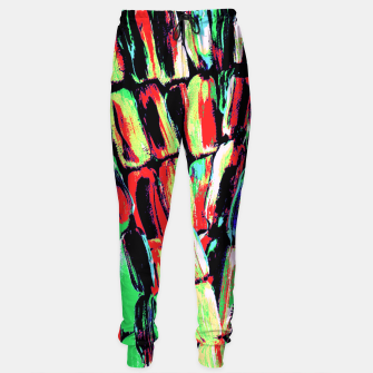 Thumbnail image of Fiesta Sugarcane Sweatpants, Live Heroes