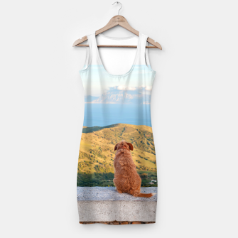 Miniaturka Lonely dog watching on Gibraltar strait Simple Dress, Live Heroes