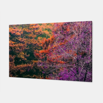 Miniaturka autumn tree in the forest in purple and brown Canvas, Live Heroes