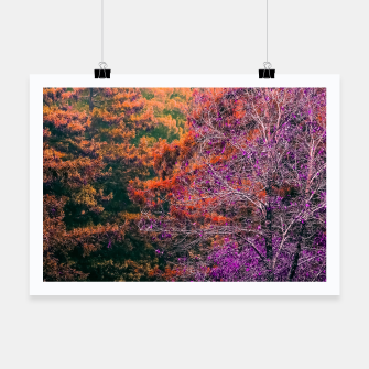 Miniaturka autumn tree in the forest in purple and brown Poster, Live Heroes