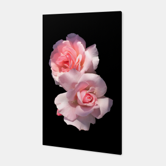 Miniatur Beautiful pink Roses  Canvas, Live Heroes