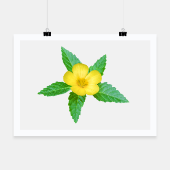 Thumbnail image of Cute Yellow Flower with Leaves Photo Poster, Live Heroes