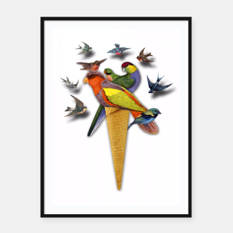 Thumbnail image of BIRDS ICE CREAM  Framed poster, Live Heroes