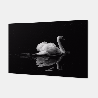 Miniaturka That Beauty: Black and White Swan Photography Canvas, Live Heroes