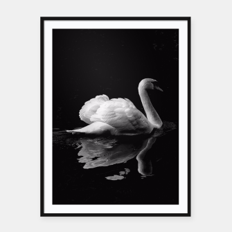 Miniaturka That Beauty: Black and White Swan Photography Framed poster, Live Heroes