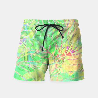 Thumbnail image of btfclrs002 Swim Shorts, Live Heroes