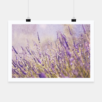Thumbnail image of Lavender Plakat, Live Heroes