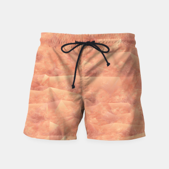 Thumbnail image of Quartz Dunes Swim Shorts, Live Heroes