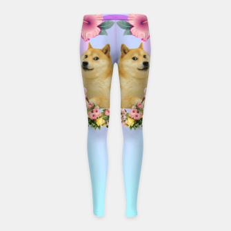 Thumbnail image of Shibaesthetic Girl's leggings, Live Heroes
