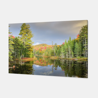 Thumbnail image of Fall Pond, Live Heroes