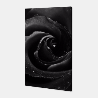 Thumbnail image of Flowers Black Rose Canvas, Live Heroes