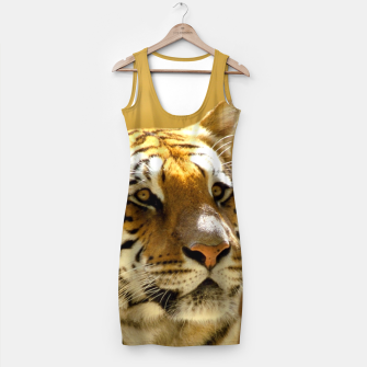 Thumbnail image of Golden Tiger Simple Dress, Live Heroes