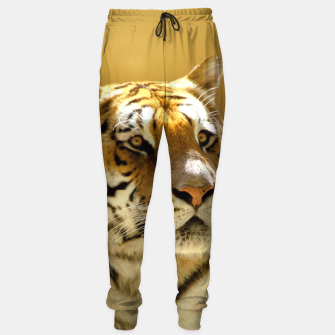 Thumbnail image of Golden Tiger Sweatpants, Live Heroes
