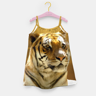 Thumbnail image of Golden Tiger Girl's Dress, Live Heroes