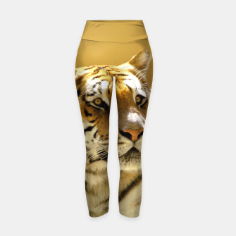 Thumbnail image of Golden Tiger Yoga Pants, Live Heroes