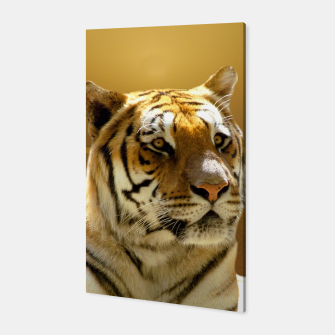 Thumbnail image of Golden Tiger Canvas, Live Heroes