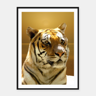 Thumbnail image of Golden Tiger Framed poster, Live Heroes