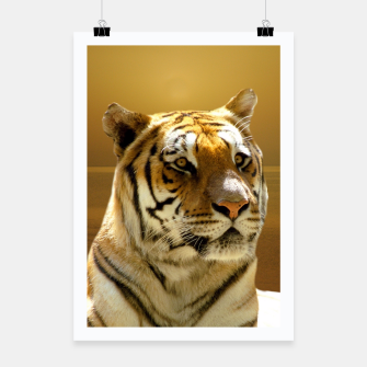 Thumbnail image of Golden Tiger Poster, Live Heroes