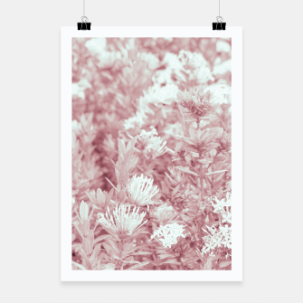 Miniatur Pink Colored Flowers Photo Poster, Live Heroes
