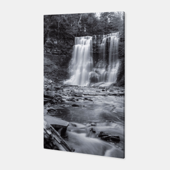 Thumbnail image of Black & White Waterfall, Live Heroes