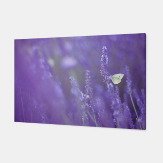 Thumbnail image of Lavender dream Canvas, Live Heroes