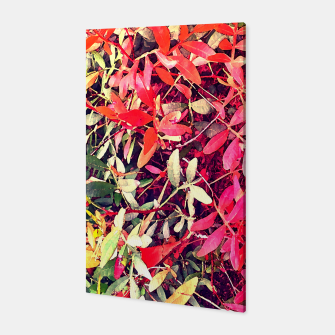 Thumbnail image of Les feuilles Toile, Live Heroes