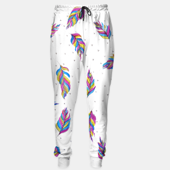 Miniatur Boho Feathers, bright with black and white background  Sweatpants, Live Heroes