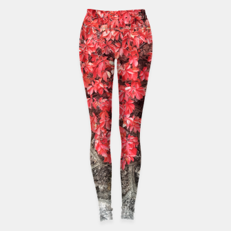 Thumbnail image of Red ivy leaves autumn stone wall Leggings, Live Heroes