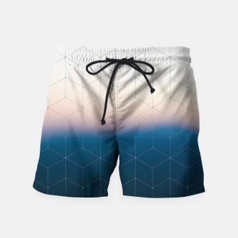 Thumbnail image of Measuring gravity Swim Shorts, Live Heroes