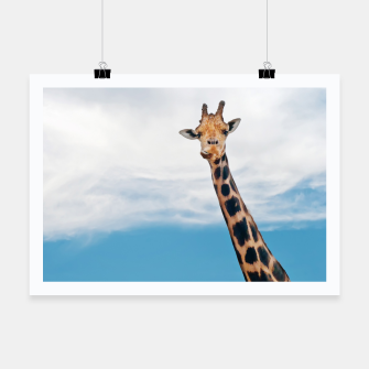 Thumbnail image of Giraffe neck and head against the clear blue sky Poster, Live Heroes