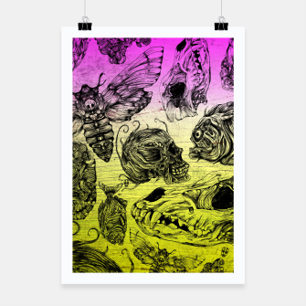 Thumbnail image of Bones and color Poster, Live Heroes