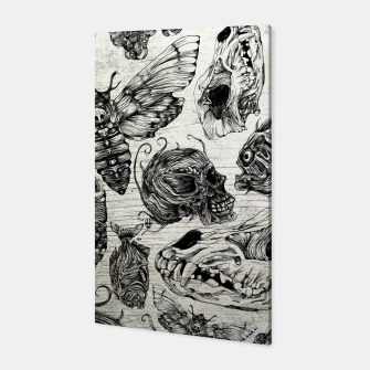 Thumbnail image of Bones and co Canvas, Live Heroes