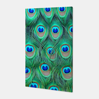 Thumbnail image of Peacock pattern Canvas, Live Heroes