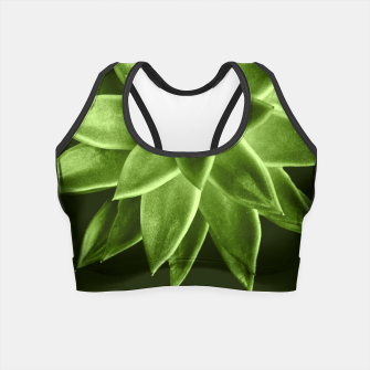 Greenery succulent Echeveria agavoides flower Crop Top thumbnail image