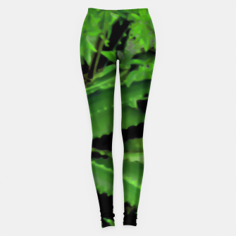 Thumbnail image of Vivid Tropical Design Leggings, Live Heroes