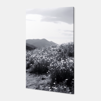 Thumbnail image of poppy flower field with mountain and cloudy sky in black and white Canvas, Live Heroes