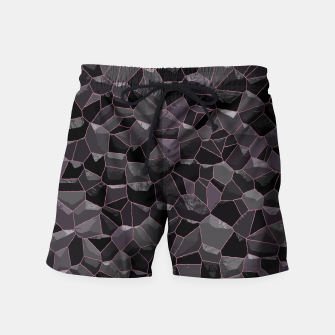 Anthracite Swim Shorts Bild der Miniatur