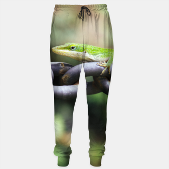 Miniaturka Anole on Chain Sweatpants, Live Heroes
