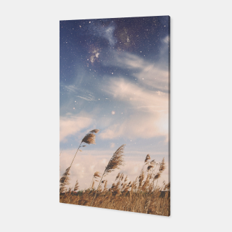 Miniatur Starfield Canvas, Live Heroes