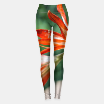 Thumbnail image of Lilies Leggings, Live Heroes