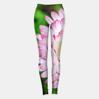 Thumbnail image of Pink Daisy Leggings, Live Heroes