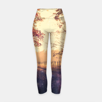 Thumbnail image of The Wind in the Trees Yoga Pants, Live Heroes