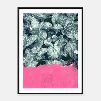 Thumbnail image of Pink Sorbet on Jungle, Live Heroes