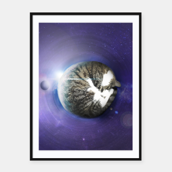 Thumbnail image of The Sleeping Cat, Live Heroes