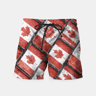 Thumbnail image of Canadian Flag Motif Pattern Swim Shorts, Live Heroes