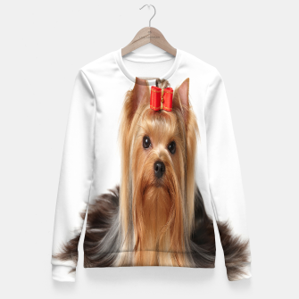 Thumbnail image of Yorkshire Terrier, Live Heroes